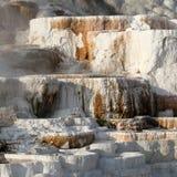 石灰华形成在Mammoth Hot Springs 库存照片