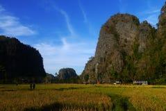 石灰岩地区常见的地形岩石墙壁在Ramang-ramang 免版税图库摄影