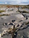 石灰岩地区常见的地形无格式 免版税库存照片