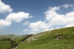 石灰岩地区常见的地形高原早期的秋天 图库摄影