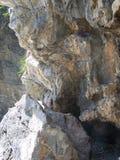 石灰岩石纹理背景-垂直 免版税库存照片
