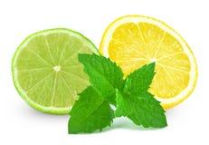 石灰用柠檬和薄菏 免版税库存照片
