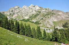 石灰石土坎,在Retezat山,罗马尼亚的Iorgovanului峭壁 免版税库存图片
