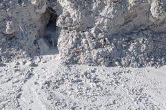 石灰石在自然光散开的水中 免版税图库摄影