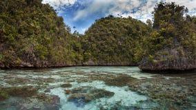 石灰石海岛在盐水湖,王侯ampat,印度尼西亚01 库存照片