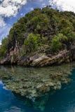 石灰石海岛在盐水湖,王侯ampat,印度尼西亚03 免版税库存图片