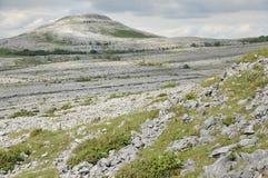 石灰石路面山, Mullaghmore 免版税库存照片