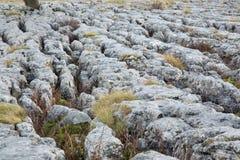 石灰石路面 免版税图库摄影