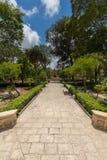 石灰石道路在Palazzo Parisio,纳沙尔,马耳他,欧洲美丽的夏天庭院里  库存照片
