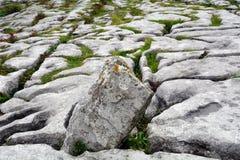 石灰石, Burren国家公园,爱尔兰 免版税库存照片