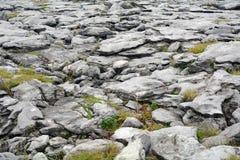 石灰石, Burren国家公园,爱尔兰 免版税图库摄影
