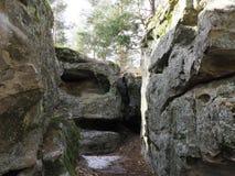 石灰石洞在森林里 免版税库存图片