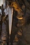 石灰石洞穴 库存图片
