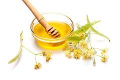 石灰花用蜂蜜 库存图片