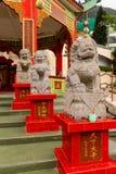 石狮子雕象特写镜头在浅水湾寺庙的 库存图片