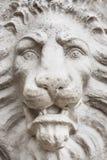 石狮子面孔关闭 免版税库存照片