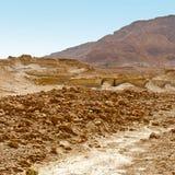 石的沙漠 免版税库存图片