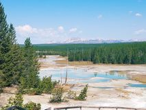 黄石矿物在水中 免版税库存照片