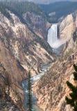 黄石秋天和大峡谷 免版税库存图片