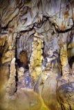 石笋和钟乳石特写镜头  免版税库存照片