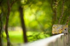 石篱芭和被弄脏的森林背景 免版税库存照片