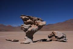 石结构树 库存图片