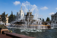 石花喷泉 库存照片