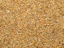 石英沙子湿海运的纹理 免版税库存照片