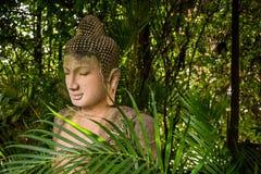 石菩萨雕象在森林背景中 免版税库存照片