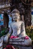 石菩萨雕象在森林背景中 免版税图库摄影
