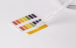 石蕊酸碱度测试和水 免版税库存照片