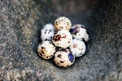 石表面上的鸡蛋 免版税库存图片