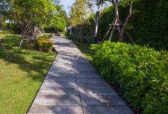 石走道在绿色庭院里 图库摄影