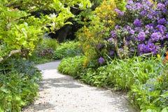 石走道通过五颜六色,春天庭院 库存图片