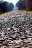 石路和在树的边 免版税库存照片