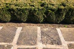 石路面纹理 背景铺有鹅卵石的花岗岩路面 老鹅卵石路面特写镜头抽象背景  Seamle 图库摄影