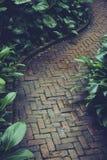 石道路方式在庭院里 免版税库存照片