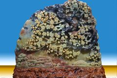 石雕刻的艺术 免版税库存图片
