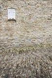 石鹅卵石和回忆录 库存照片