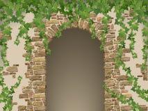 石头和垂悬的常春藤曲拱  免版税库存照片