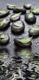 黑石头和绿色叶子,盖用水下落 库存图片