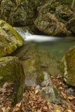 石头和黄色叶子围拢的山小河 免版税图库摄影