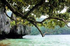 石洞穴和绿色树在蓝色海。 图库摄影