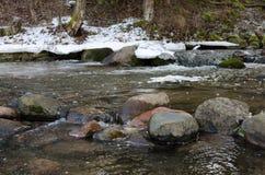 石头在春天河 库存图片