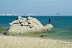 石头在海滨附近的水中 免版税库存图片