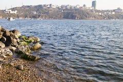 石头在水中 免版税图库摄影