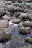 石头在水中 免版税库存照片