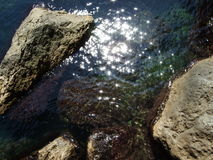 石头在水中 图库摄影
