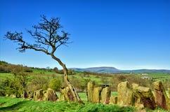 石头在Pendle小山附近修造了边界栅栏 库存照片