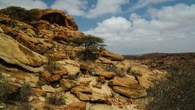 石洞壁画Laas Geel岩石外部在哈尔格萨索马里附近 免版税库存图片